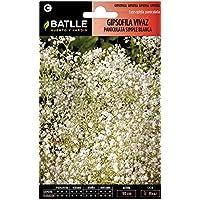 Semillas de Flores - Gipsofila vivaz Paniculata - Batlle