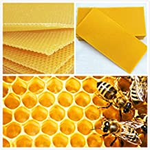 LM 30Pcs Honeycomb Foundation Beehive Wax Frames Waxing Beekeeping Equipment Bee Hive Comb Honey Frames