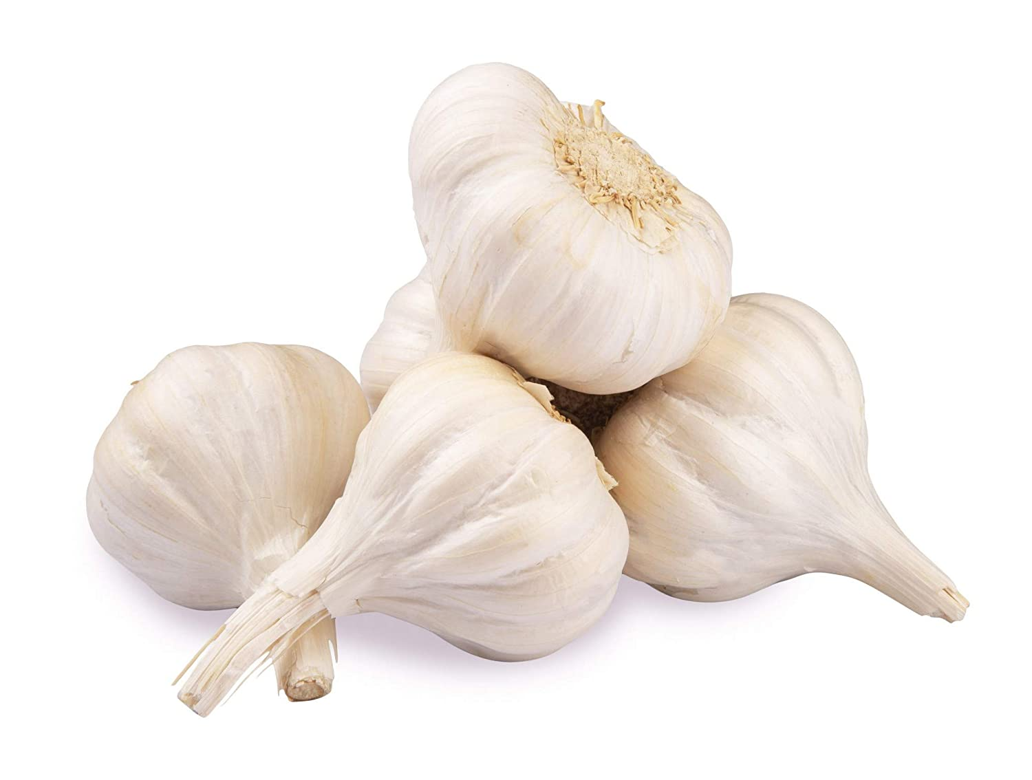 Fresh Garlic, 250g: Amazon.in: Grocery & Gourmet Foods