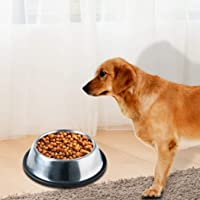 PaWz Pet Bowl Stainless Steel Non Tip Slip Dog Cat Puppy Water Food Feeder Dish
