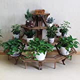 The Best Choice of Spring Indoor Flower Stand! Classic Plant Stand Shelf Holds 4 Tier Fir Wood Indoor Display Rack (4-Tier Brown)