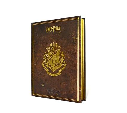 Diario escolar Harry Potter Edition.2019/2020 13 x 18 cm ...