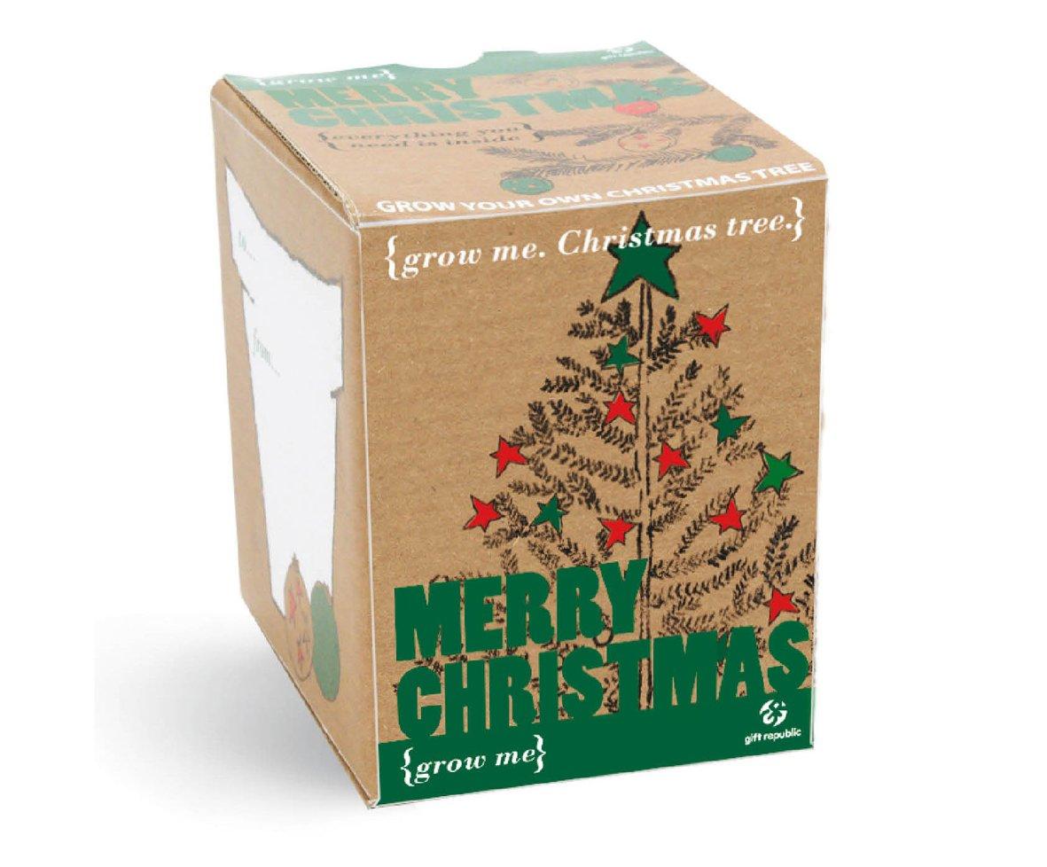 Grow Me Christmas Tree: Amazon.co.uk: Garden & Outdoors