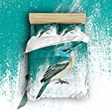 Lightweight Microfiber Duvet Cover Set With Zipper Close,Reversible Color Design Hypoallergenic Microfiber Luxury Soft Brushed with Matching Shams - Exotic Blue Green Bird