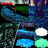 220 Pack of Luminous Stone Glow in Dark Glow Pebbles for Garden Yard Walkway, Bonsai, Aquarium (3 Color)