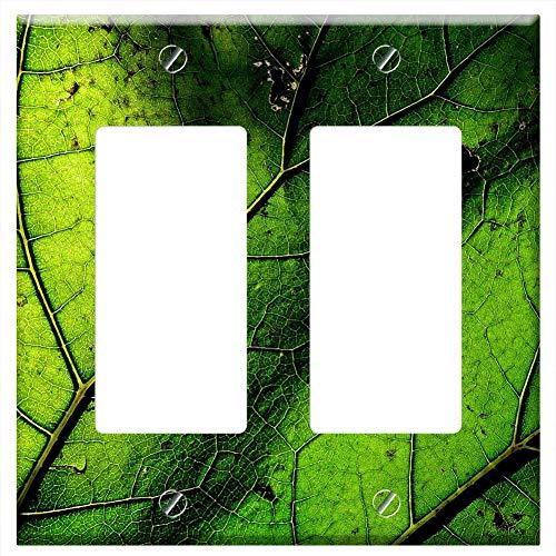 (Switch Plate Double Rocker/GFCI - Butterbur Petasitus Hybridus Asteraceae Plant Leaf 1)