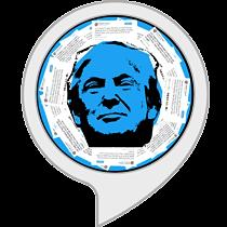 Trump's Tweets Quiz - Wahr oder Falsch?