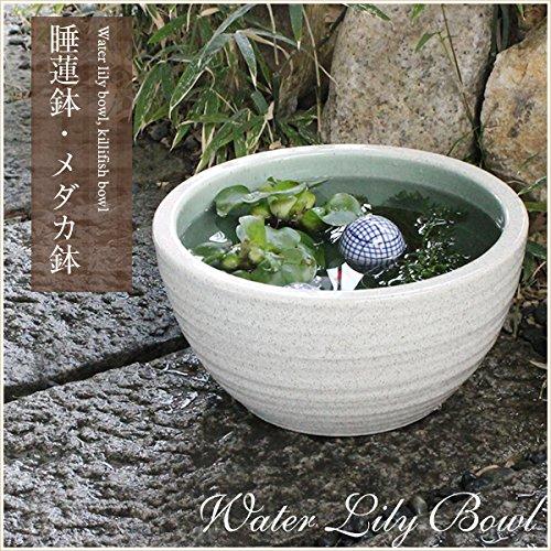 信楽焼 10号白カスミ すいれん鉢 メダカ鉢 睡蓮鉢