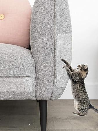 raspbery La Cinta De Entrenamiento Anti-arañazos para Gatos ...