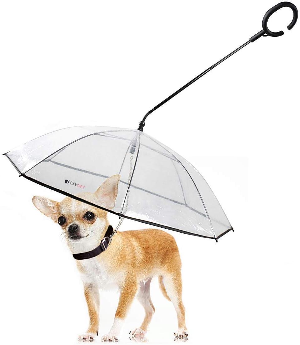 Best Dog umbrella with leash 2