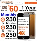 Image of 1 Year Prepaid GSM SIM Card - Monthly 250 Talk 250 Txt No Contract 12 Months Plan