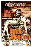 Bride Of The Monster Bela Lugosi 1955 Movie Poster Masterprint (24 x 36)
