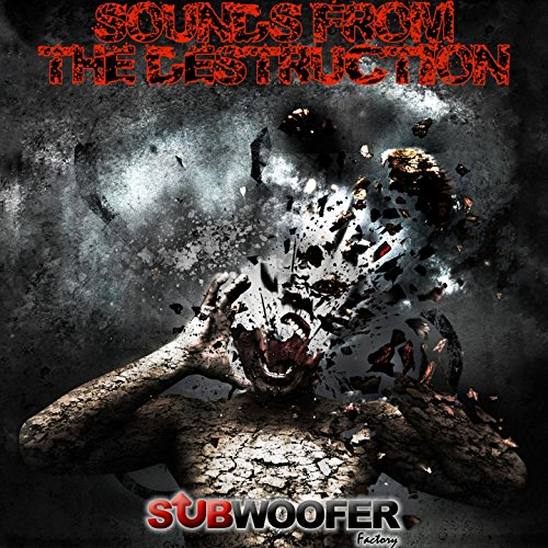 Subwoofer 08 - 08-16