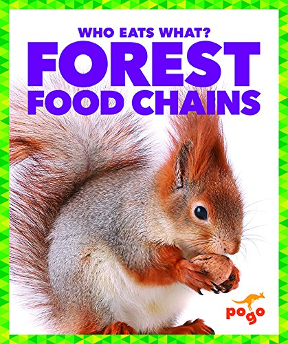 Forest Food Chains (Who Eats What?)