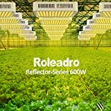 600W Grow Light, Roleadro LED Grow Light White