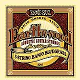 Ernie Ball P02063 Earthwood 5-string Banjo 80/20 Bronze Loop End Bluegrass Set (09 - 20)