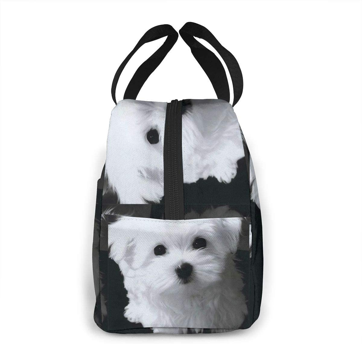 Casual Beach Bag Cute Funny Warm Animal Pet Dog Painting Durable Water Resistant Classic Tolietry Travel Bag Women High School Bag Colleges Bags Light Sports Bag