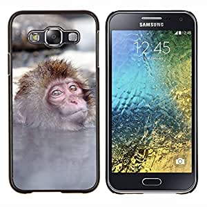 - Monkey Cute Animal - - Cubierta del caso de impacto con el patr??n Art Designs FOR Samsung Galaxy E5 E500 Queen Pattern