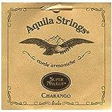 Aquila 1CH Charango Strings Medium Tension Super Nylgut