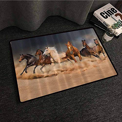 (Horse Country Khaki Front Door Mat Large Outdoor Indoor Masculine Running Horses Southwestern Gifts for Equestrians Farm Easy to Clean Carpet W16 xL24 Brown Charcoal Gray Cream)