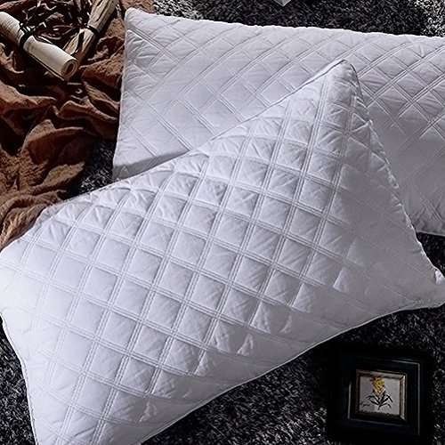 Super Soft Down Alternative Quilted Bed Pillow 2 Pack