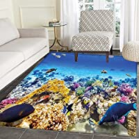Fish Print Area rug Underwater Sea World Scene with Goldfish Starfish and Jellyfish Depth Diving Concept Perfect for any Room, Floor Carpet 4x6 Turquoise