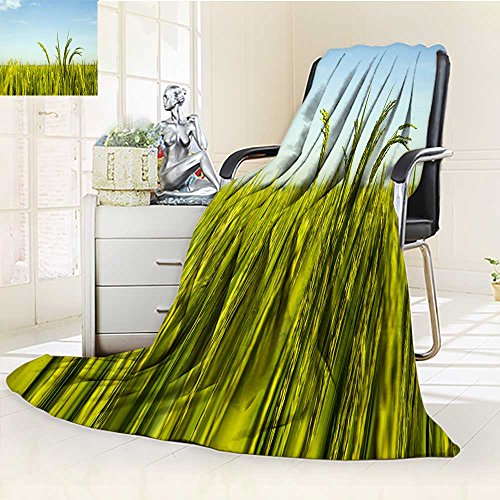 - YOYI-HOME Supersoft Fleece Duplex Printed Blanket Growing Rice Warm Microfiber All Season Anti-Static,2 Ply Thick,Hypoallergenic/59 W by 86.5