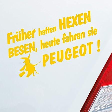 Auto Aufkleber In Deiner Wunschfarbe Frueher Hatten Hexen Besen Heute Fahren Sie Für Peugeot Fans 19x10 Cm Sticker Auto