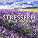 Stressfrei mit Schallgeschwindigkeit: Das Anti-Stress-Paket zum Heilen von Körper, Geist und Seele Hörbuch von Patrick Lynen Gesprochen von: Patrick Lynen, Dorothee Krüger