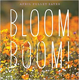 Image result for bloom boom amazon