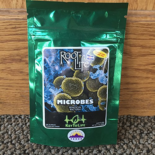 root-life-bio-stimulants-microbes