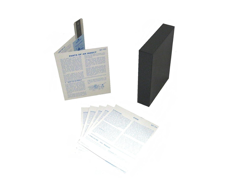American Educational MicroSlide partes de un conjunto de insectos lección, 30 Lesson Plans, 30