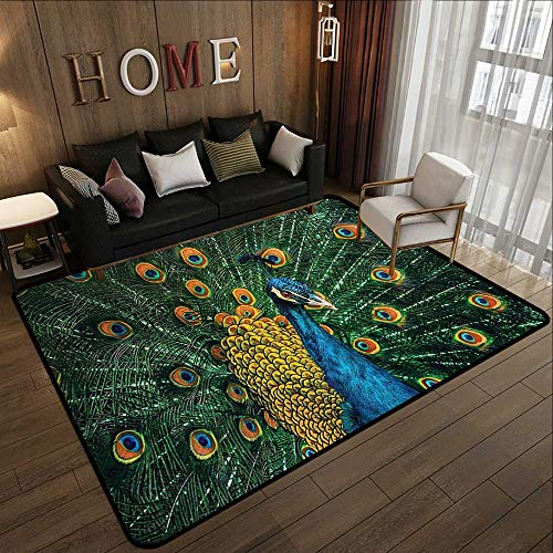 Large Classical Carpet,Peacock Decor,Portrait of The Peacock During Courtship Display Eye Spotted Tail Tropics Natural 63