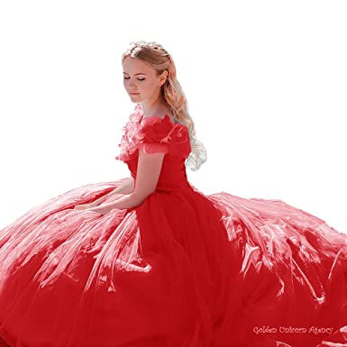 XCOS Charming Cinderella Costume Dresses Adult Wedding Dresses Petticoat for free  sc 1 st  Amazon.com & Amazon.com: XCOS Charming Cinderella Costume Dresses Adult Wedding ...