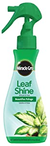 Miracle-Gro Leaf Shine, 8-Ounce