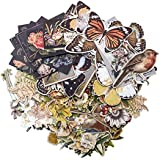 Layers - Botanical by Tim Holtz Idea-ology, Chipboard, 83 Dye-Cut Pieces (TH93554)