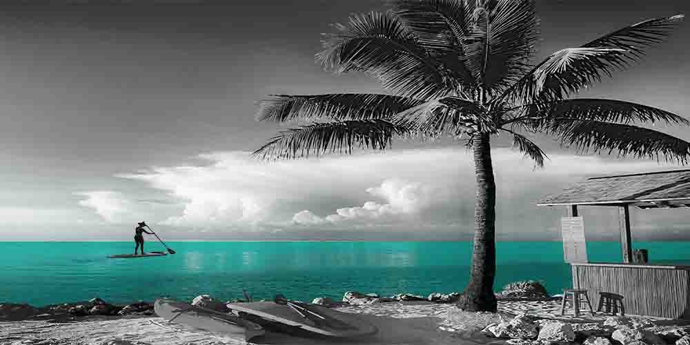 Beach Fun 2 - Gray Background - 3 Decor Colors, Canvas Wrapped, Home Decor Wall Art Floral Flower Pictures, Living Room, Bedroom, Family Room, Kids Room) (Aqua, 20x40)