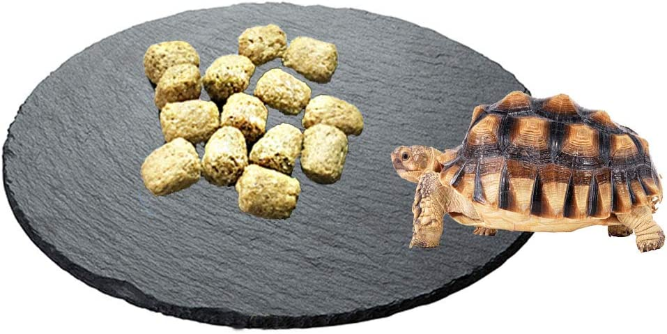 Tfwadmx Reptile Basking Platform,Tortoise Rock Slate Plate Feeding Platform Food Bowl Dish Turtle Bathing Rock Resting Terrace for Lizard Bearded Dragon Chameleon Gecko Snake Frog Newt
