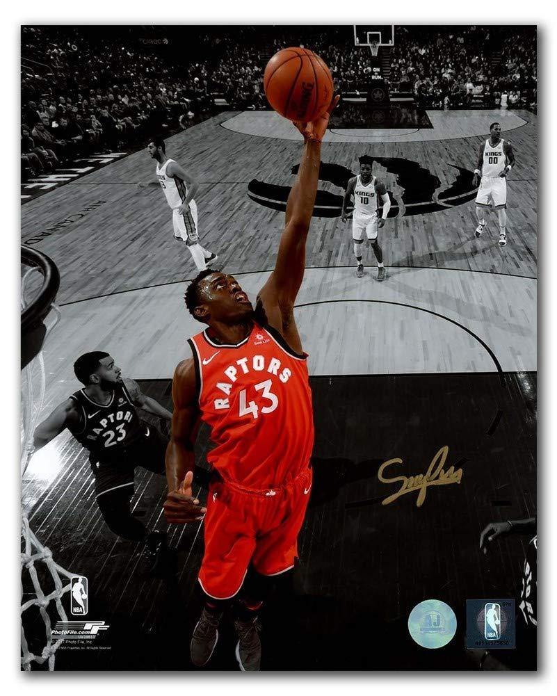 Pascal Siakam Toronto Raptors Autographed Signature Basketball Spotlight 8x10 Photo - COA Included
