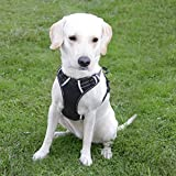 Dog Harness, No Pull Dog Harness, Front Range Dog Harness, Adjustable, Outdoor, Pet Vest, 3M Reflective, Oxford Vest for Dogs, Easy Control, for Medium Dogs