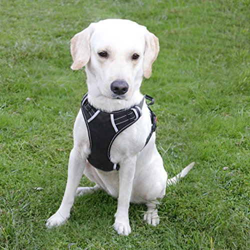 Menkar Dog Harness No Pull Pet Vest Adjustable Outdoor Reflective Oxford Material Easy Control for Medium Breed Dogs