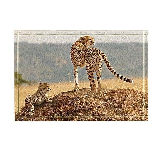 Rrfwq Wildtier Dekor Safari Leopard Mutter und Sohn auf Prairie Bath ...