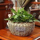 EXDJ Willow Straw rattan Flowerpot pure hand woven potted flower basket,F,20X14cm