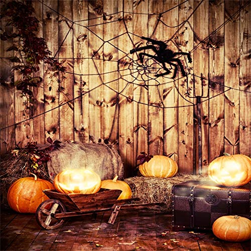 OFILA Halloween Backdrop 5x5ft Kids Halloween Photography Background Pumpkin Lights Cobweb Autumn Haystack Phoots Spider Halloween Ornament Wood Photos Halloween Party Decoration Video Props