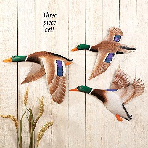 Duck Wall Decor: Amazon.com