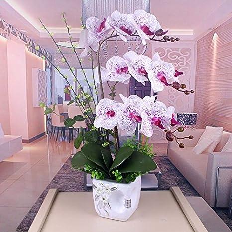 SCLOTHS - Orquídea Mariposa para salón de Plantas en macetas ...