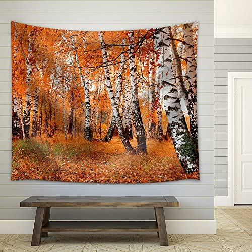 Orange Birch Grove Fabric Wall