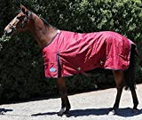 Barnsby Equestrian Waterproof Horse Winter Blanket/Turnout Rug - Standard Neck - 600 Denier with 100g Fill Plum 66''