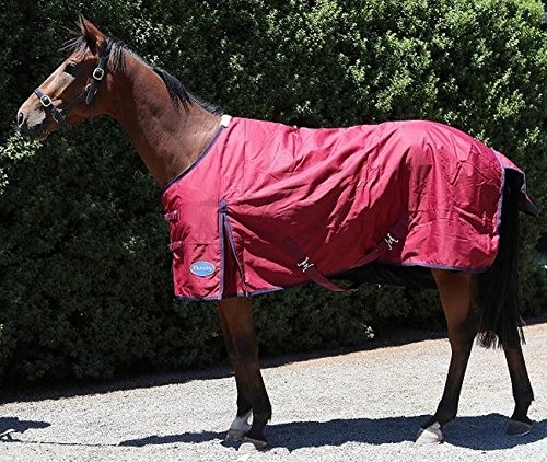 Standard Neck Stable Blanket (Barnsby Equestrian Waterproof Horse Winter Blanket/Turnout Rug - Standard Neck - 1200 Denier with 100g Fill Plum 84