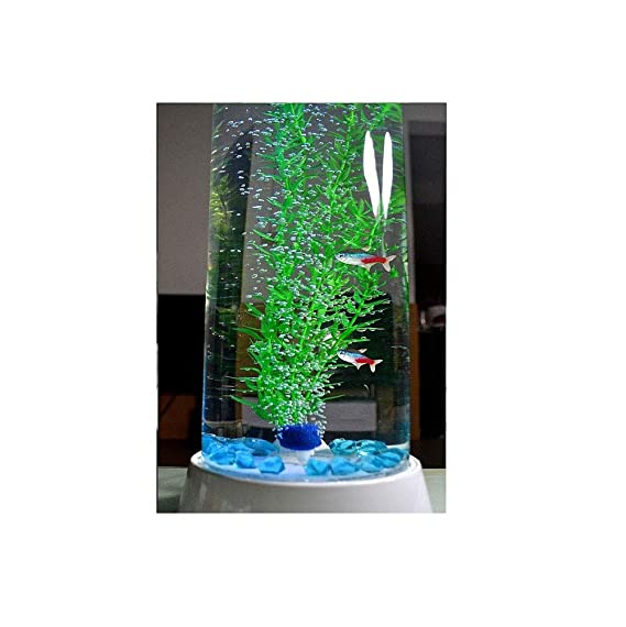 Suna Acuario Pecera Agua Libre Cilíndrica Vidrio Salón Eco-Cilindro: Amazon.es: Productos para mascotas